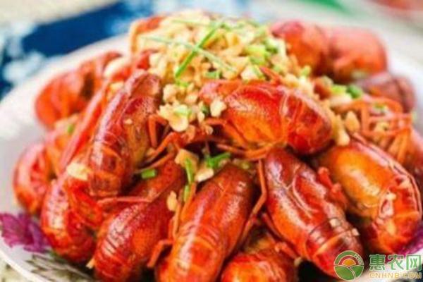 小龙虾养殖的3大容易忽略的误区